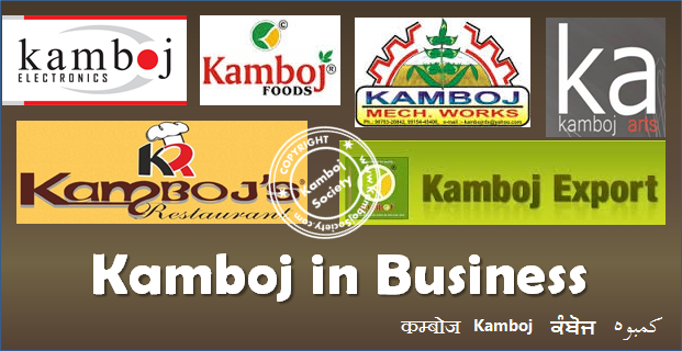 Kamboj in Business