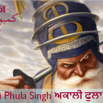 Akali Phula Singh