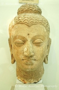 Gandhara Kamboja Dynasty - Sculpture of head of Buddha